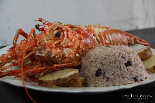 Lobster is a seasonal belize delicacy
