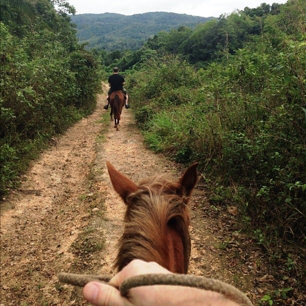 Horseback riding in Belize jungles