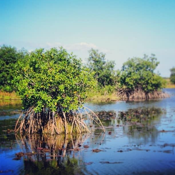 Belize Beaches: The Best Belize Instagram Photos (February 11