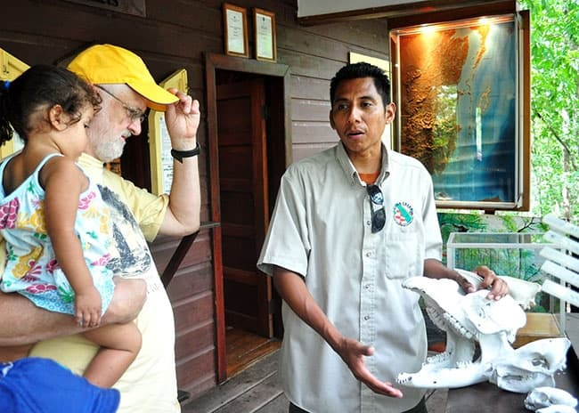 natural history belize