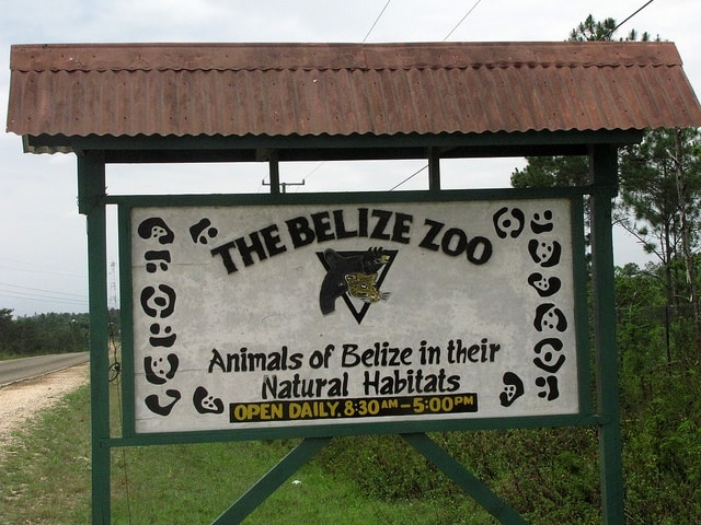 Belize Zoo belize