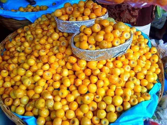 craboo fruit in Belize