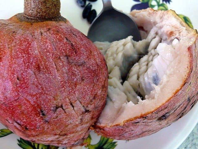 Custard Apple Belize