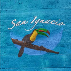 san-ignacio-toucan-painting-hawksworth-bridge